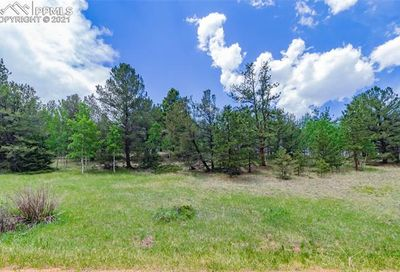 185 Willow Road Divide CO 80814