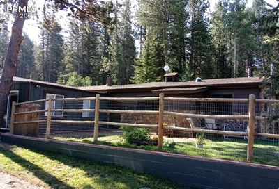 144 South Forty Road Woodland Park CO 80863