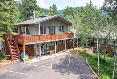 159 Trull Road Woodland Park CO 80863