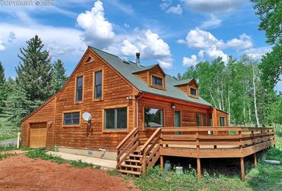 561 Mills Ranch Road Woodland Park CO 80863