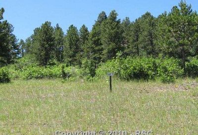 756 Forest View Way Monument CO 80132