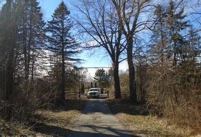 V/L Mcclements Road Brighton Twp MI 48814