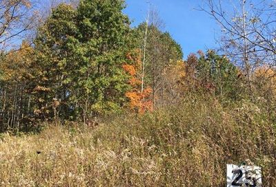 Lot 25 Jacob Court Windsor Twp MI 48821