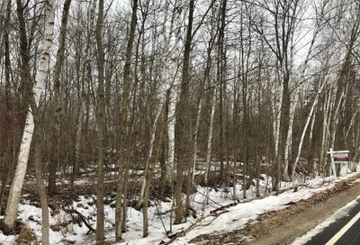 Willard Road Forest Twp MI 48746