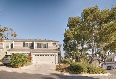 33296 Ocean Bright Dana Point CA 92629