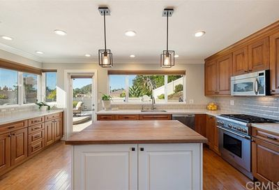 33171 Sea Lion Drive Dana Point CA 92629