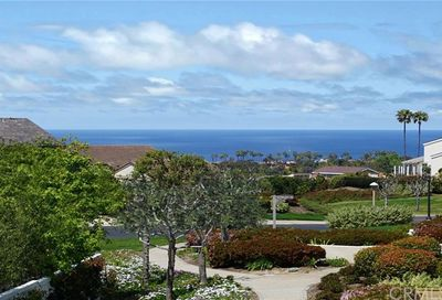 33541 Moonsail Drive Dana Point CA 92629