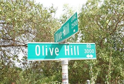 3000 Olive Hill Road Fallbrook CA 92028