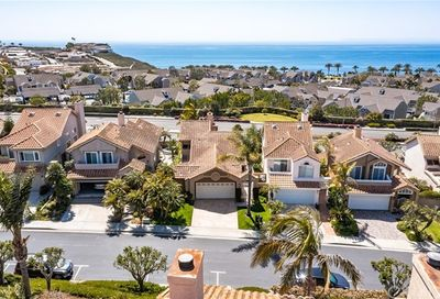 39 Palm Beach Court Dana Point CA 92629