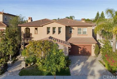 35 Antique Rose Irvine CA 92620