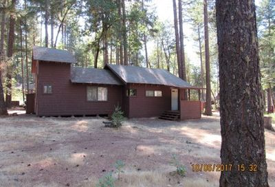 51 Bear Loop Upper Lake CA 95469