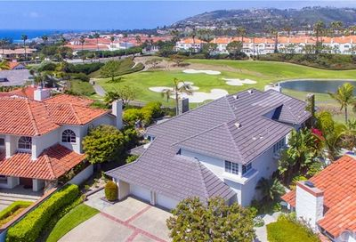 9 Guadalmina Drive Dana Point CA 92629