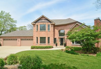 407 Hypoint Drive Deer Park IL 60010