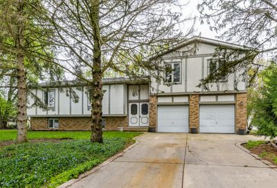 1656 Suzy Street Lake Holiday IL 60548