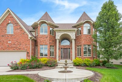 2908 Willow Ridge Drive Naperville IL 60564
