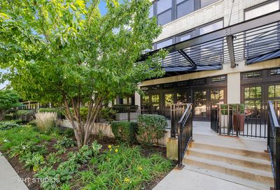 1151 West 14th Place Chicago IL 60608