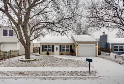 2385 Goldenrod Court Aurora IL 60506