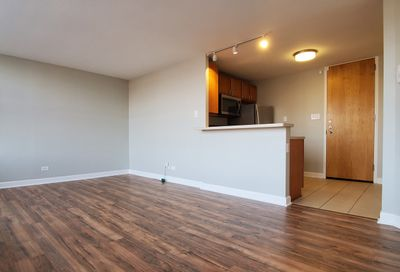 345 East Eastgate Place Chicago IL 60616