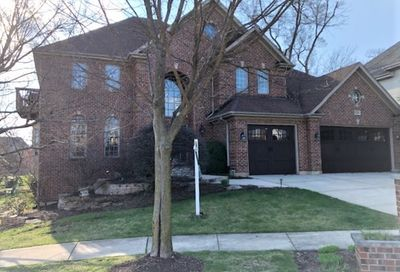 820 Timber Ridge Court Westmont IL 60559