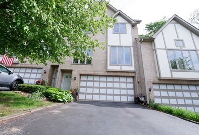 17 Cliffside Circle Drive Willow Springs IL 60480