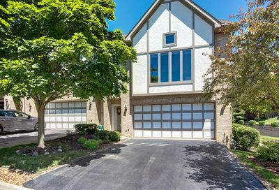36 Cliffside Circle Drive Willow Springs IL 60480