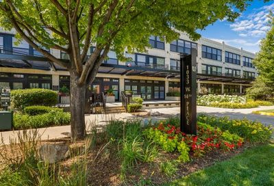 1033 West 14th Place Chicago IL 60608