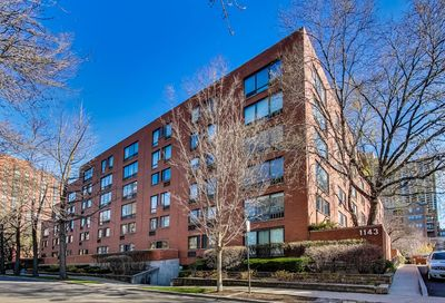 1143 South Plymouth Court Chicago IL 60605