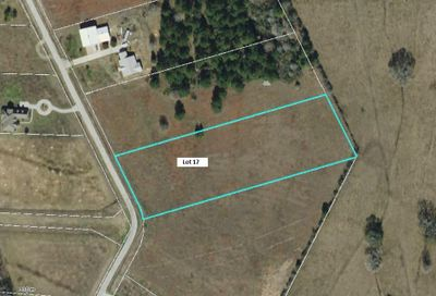 Lot Q (17) Ponderosa Drive New Waverly TX 77358