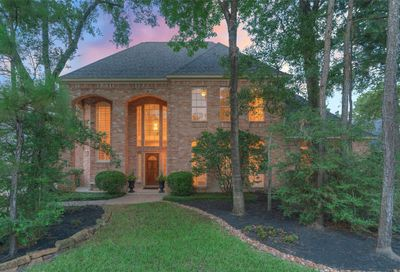 46 E Wedgemere Circle The Woodlands TX 77381