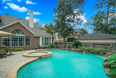 11 N Goldenvine Circle The Woodlands TX 77382