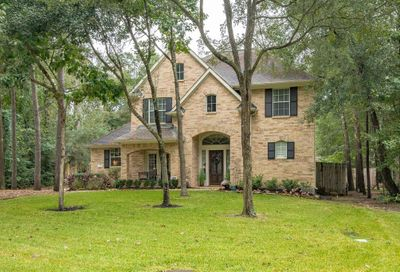 95 N Downy Willow Circle The Woodlands TX 77382