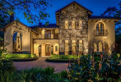 46 S Palmiera Circle The Woodlands TX 77382