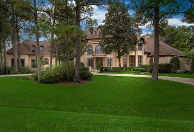 45 Red Sable Point The Woodlands TX 77380