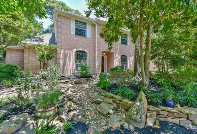 14 Cinnamon Teal Place The Woodlands TX 77382