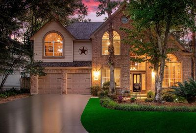 31 Misted Lilac Place The Woodlands TX 77381
