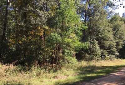 Lot 10 Fawn Drive New Waverly TX 77358