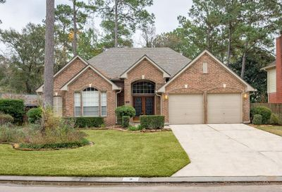9 Featherfall Place The Woodlands TX 77382
