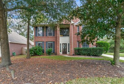 10 Shellbark Place The Woodlands TX 77382