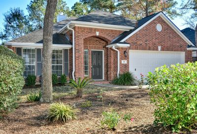 14 Paddock Pines Place The Woodlands TX 77382