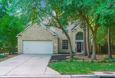 18 Beckett Hill Place The Woodlands TX 77382
