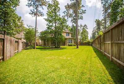 6 Antico Court The Woodlands TX 77382