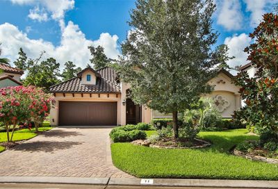 11 Moatwood Court The Woodlands TX 77382