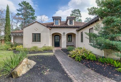2 Moatwood Court The Woodlands TX 77382