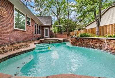 174 Maple Path Place The Woodlands TX 77382