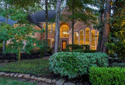 19 Gentlewind Place The Woodlands TX 77381