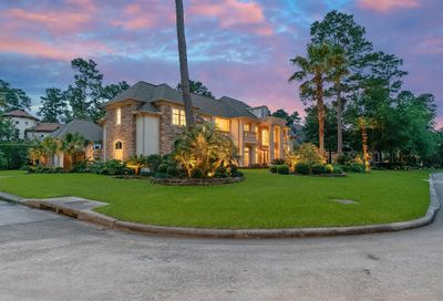 94 Palmiera Drive The Woodlands TX 77382