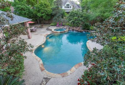 22 Serenity Woods Place The Woodlands TX 77382
