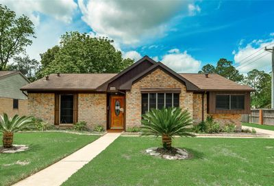 15602 Thunderbay Drive Houston TX 77062