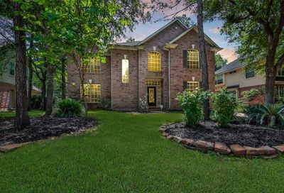 10 Sagamore Bend Place The Woodlands TX 77382