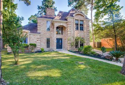 28 Hornsilver Place The Woodlands TX 77381